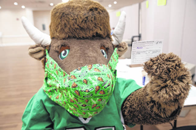 Pictured is Marshall University's mascot, Marco, with his COVID-19 vaccine card.