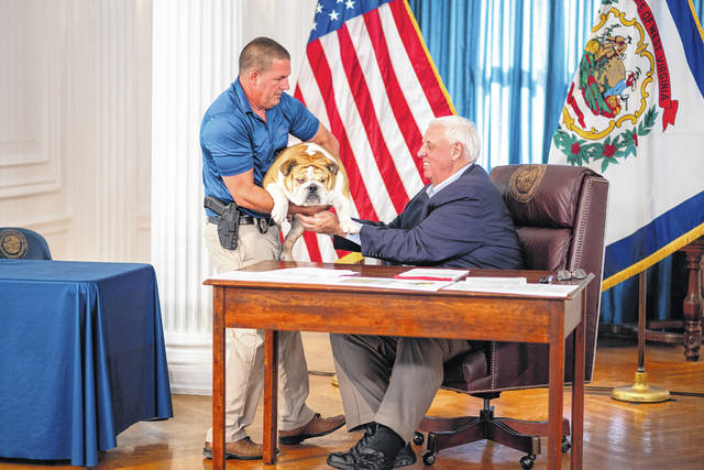 Gov. Jim Justice with Babydog, who will serve as the mascot of the state's vaccination incentive lottery program.