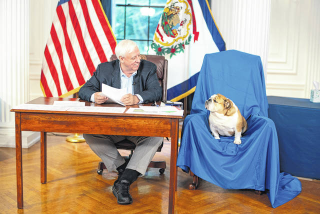 Gov. Jim Justice is pictured with Babydog on Thursday in Charleston during the governor's press briefing.