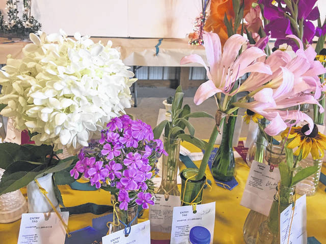 Horticultural: Prize winning horticultural specimens groomed for exhibit at a previous Meigs County Fair include Hydrangeas, Lilies, Black Eyed Susans.