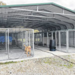 New chapter for animal shelter
