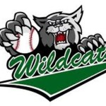 Wildcats 8U select baseball team to hold tryouts