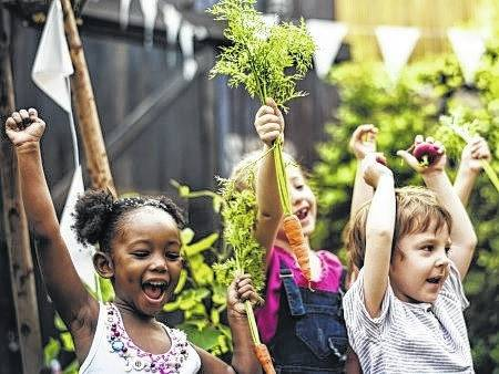 <strong>Educators involved in school, afterschool or health programs can attend any of three different gardening programs taking place in fall.</strong>