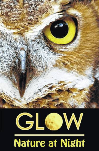 <strong>Bring your family and friends to enjoy Aullwood's GLOW: Nature at Night on October 20 & 21 from 6:30-9:30 p.m. Grab a flashlight and follow a naturalist on a night hike to seek out illusive night creatures.</strong>