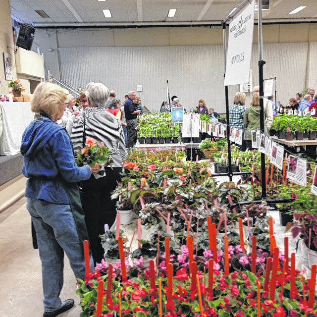 <strong>Wegerzyn Gardens Foundation will hold its 45th annual MayFair Plant Sale Saturday, May 5 and Sunday, May 6 in the Wegerzyn Gardens MetroPark auditorium.</strong>