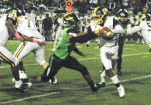 Thunderbolts end Wildcats undefeated season