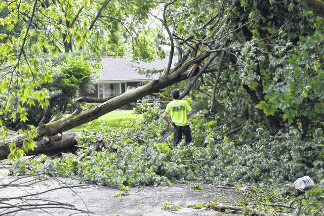 A contractor works to cut up a downed sugar maple blocking a driveway early Tuesday morning. (Photo by Ron Nunnari | AIM Media Midwest)