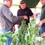 Agronomy Day set for Aug. 11