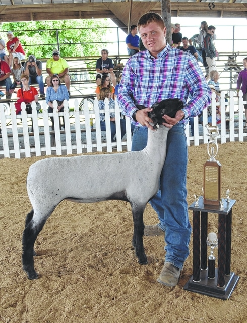 Clayton Gallagher, 15, of Washington C.H., was named showman of showmen Thursday at the Madison County Jr. Fair Sheep Show.
