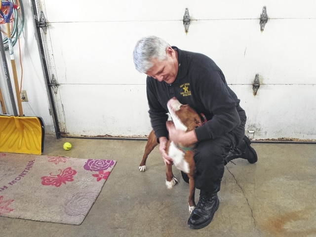 The new Fayette County Dog Shelter Dog Warden, Bruce Denen, who was appointed earlier this month, is continuing to adjust to a different sort of work than what he is used to, but is confident that between his years of management and training from the assistant dog warden, Nelson Prater, that he will be able to serve the community well. He is pictured with Sissy, a 1-year-old pit bull, who is available for adoption.