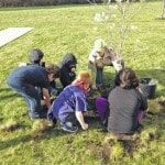 Cub Scouts plant tree at YUSA R&D recently