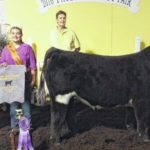 Sister and brother claim victories at steer show
