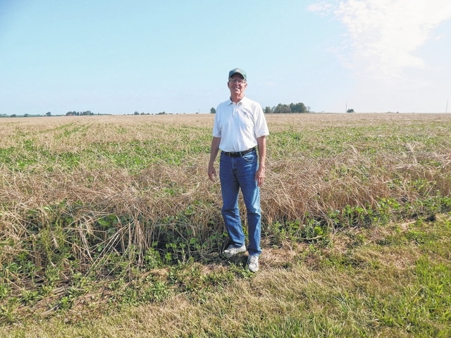 Geoff Mavis standing by his soybean field that was planted into cereal rye.
