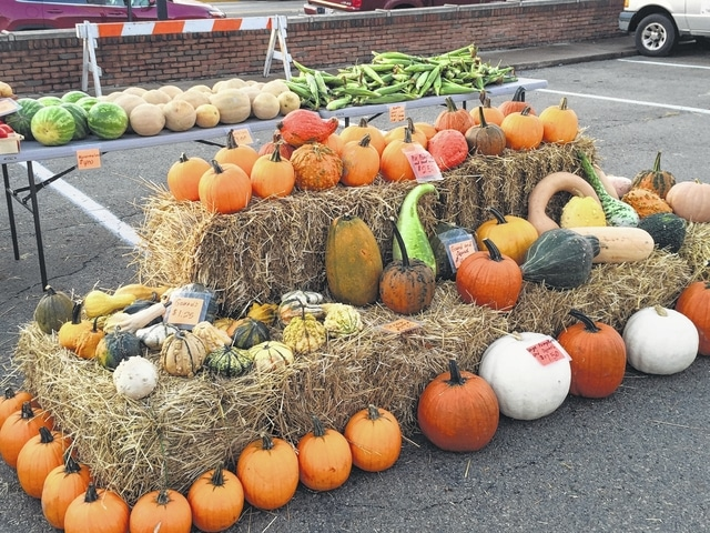 Keypoint Farm has a variety of pumpkins/squash.