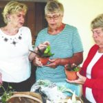 Fayette Garden Club holds seed and plant exchange
