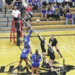 Lady Lions rally, beat Lady Panthers in Sectional semifinal