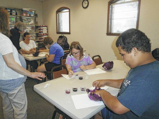 Pat Brinkman, Fayette County OSU Extension Director and Family Consumer Science Educator, and Sarah Sowell, Program Assistant SNAP-ED, taught a fun and interesting program about the importance of fruits and vegetables at Jeffersonville Branch Library recently. Those that attended were able to do an experiment involving red cabbage, vinegar, grape juice and baking soda, which proved to be very enlightening as well as creating a blueberry and banana smoothie, cole slaw and a toasty pizza.