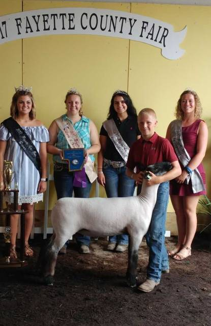 Thaddeus Stuckey was awarded overall grand champion market lamb Thursday at the 2017 Fayette County Fair, champion Hampshire, and first overall in show class 13 Hampshire.