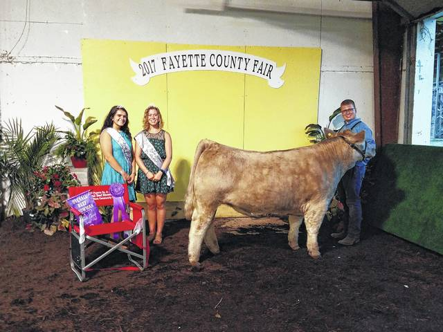Quinton Waits was named the Overall Beef Steer Showman during the Beef Show Tuesday. He is pictured with Queen Attendants Susanna Eckstein and Clare Sollars. Waits said he will not be competing on Saturday as he will be traveling to the Ohio State Fair for a prior engagement. Another class was held Tuesday evening to decide who would represent the beef at the Showman of Showmen competition and Victoria Waits was chosen to represent the beef.