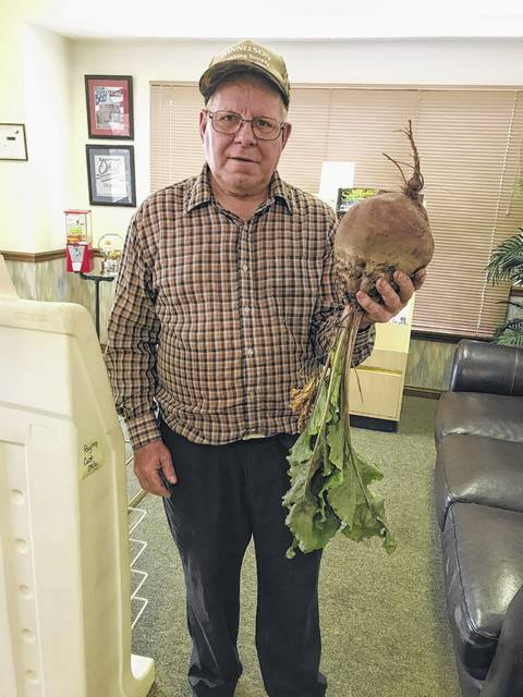 Richard Creed Thomas, from Bloomingburg, grew this five pound beet in his garden. He said he hasn't the slightest idea of what he is going to do with it.