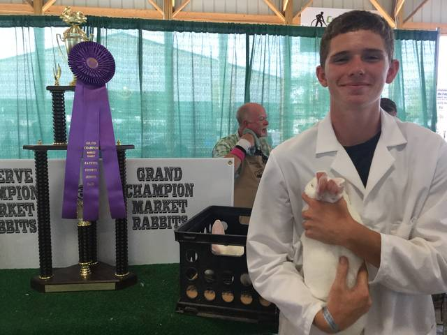 Wyatt Cory was awarded grand champion in the 2017 rabbit market meat pen of two show.