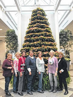 The Deer Creek Daisy garden club visited the Franklin Park Conservatory for their November outing.