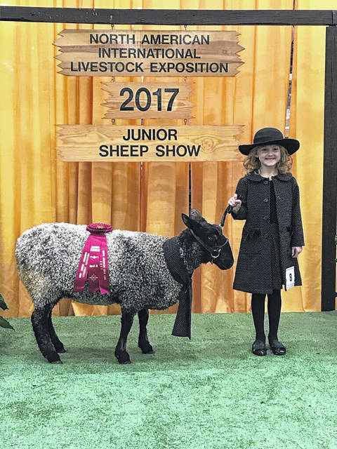 Alli Knecht, daughter of Angie and Matt Knecht of Jeffersonville, competed with her lamb Sparkles at the North American International Livestock Exposition in Louisville, Ky. recently. She placed second in her age division of 8-10-year-olds in the Guys & Gals sheep lead. This competition had youth from all over the United States.