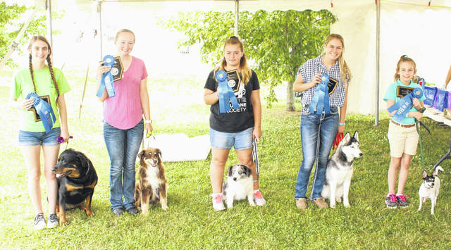 Dog rally first place winners — This event was held Wednesday morning, July 18, 2018 at the Fayette County Fair. (l-r); Summer Hurles with Hailee, Advance Rally B; Aubry Leonard with Puppy, Rally Novice C; Hailey Honicker with Jasper, Rally Advance A; Tori Evans with Nova, Rally Novice B and Laine Holstein with Frito, Rally Novice A.