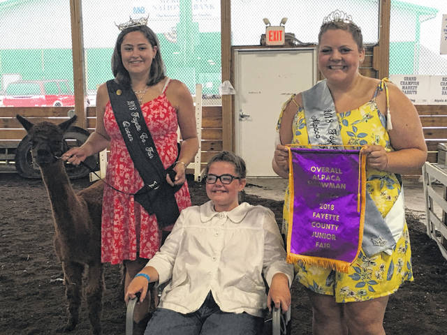 Fayette County Fair Queen Jordan Bernard, overall alpaca showman Mackenna Leasure, and Alpaca Princess Ali Reeves celebrate Leasure's win.