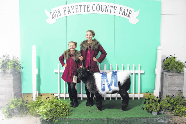 The 2018 Fayette County Guys & Gals Sheep Lead was held Monday evening at the sales arena. Winner of the pairs class were Hidy and Cali Kirkpatrick.