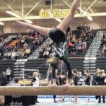 Local gymnasts perform at Centerville
