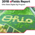 2018 eFields Research Report available