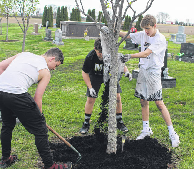 Devin Seymour, Skylar Mitchell and Garritt Smith (l-r), pour and spread mulch around a tree at the Jeffersonville Cemetery.