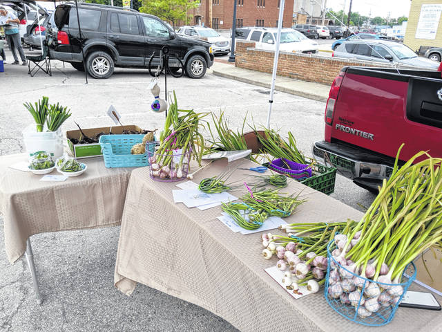 Garlic and onions are available at the Fayette County Farmers Market in downtown Washington C.H.