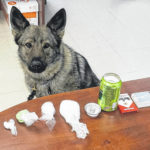 Three facing drug trafficking charges