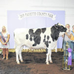 Pursell, Webb win big at Dairy Show