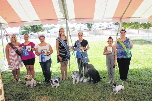 Several obedience class winners were named at Monday's Fayette County Junior Fair Dog Show. From left are Fayette County Fair Queen Abbi Pettit, Beginner - Novice B winner Hayleigh Bageant, Novice B winner Hailey Honicker, Fayette County Fair Attendant Andrea Robinson, Graduate Novice B and Dog-Brace winner Tori Evans, Pre-Novice winner Laine Holstein, and Dog Ambassador Katrina Koski.