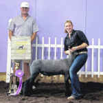 Melvin takes top lamb prize