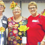 2019 Daylily Show held recently