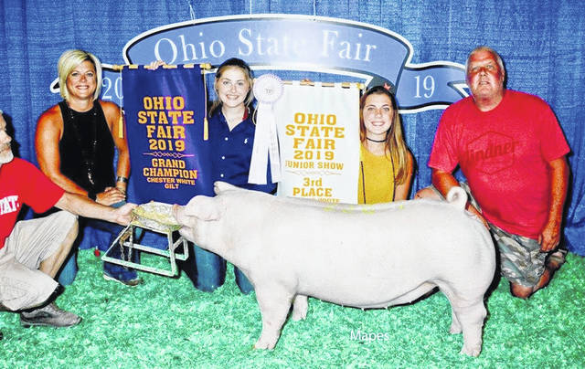 Gracee and Jessee Stewart are members of the Clinton County Blue Ribbon Kids 4-H Club who won big at the 2019 Ohio State Fair. Gracee is a junior at Miami Trace HIgh School where she is a member of the FFA; Jessee is an eighth-grader at Miami Trace Middle School. Shown, Jessee Stewart won Champion Chester Gilt Open Show and 3rd Overall Chester Gilt Jr. Show.