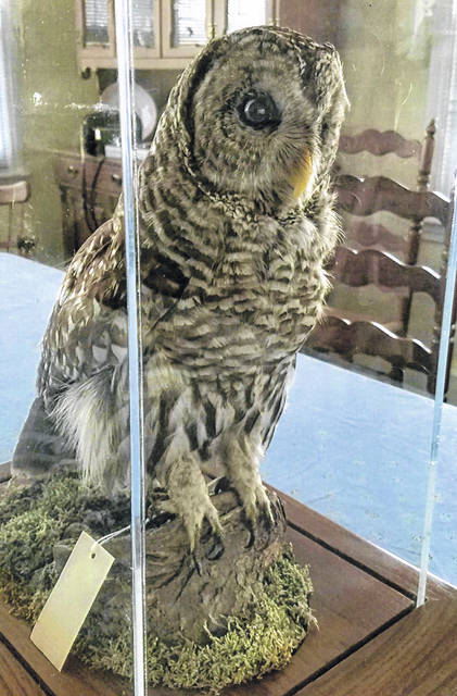 Owls were a major part of the discussion at the Fayette Garden Club September meeting.