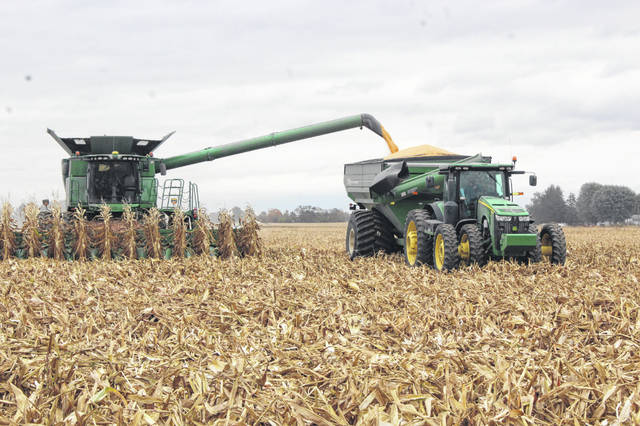 Harvest season is underway in Fayette County. On Wednesday local farmers could be seen on State Route 41 near the Fayette County Family YMCA harvesting corn by the acre.
