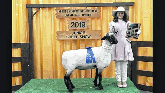 "Natalie Lindsey with her Hampshire ewe, ""Marshmellow,"" at the North American International Livestock Exposition sheep lead in Louisville, Ky. She received a first place rosette and plaque in class, ages 14-16. This contest concluded her circuit of county fairs, state fair and international shows for 2019. This is her 10th year of competition in sheep lead. Lindsey's ewe was born and raised on the family farm where she resides with her parents, Shawn and Aimee, and brother, Nic Lindsey. Natalie is a freshman at Miami Trace High School."