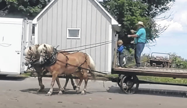 In a video on Cedar Brook Ridge Haflingers' YouTube channel, a man gives Jack, right, and Jim a refresher in driving. This is one of the videos that helped Wisconsin resident Ann-Marie Haas Niec trace her horses back to Greenfield.