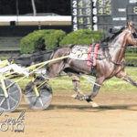 Catch The Fire to race Saturday at the Meadowlands