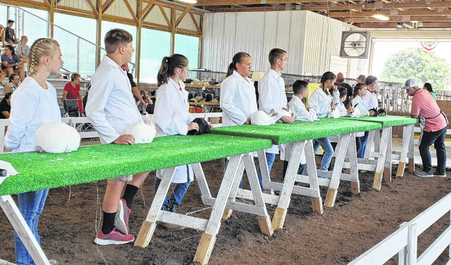The individuals who won first place in each class during the Fayette County Junior Fair rabbit showmanship event on Monday morning, competed for overall rabbit showman. The placement for overall showman was (in order): Alyvia Atkinson, Abigail Mick, Lindsey Stump, Leah Marine and Meyer Bloom. Other participants: Caleb Bennett, Jake Manbevers, Kamika Bennett, Alainee Wolffe and Claire Streitenberger.