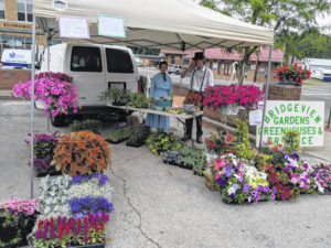 Farmers Market to commence Saturday, May 8