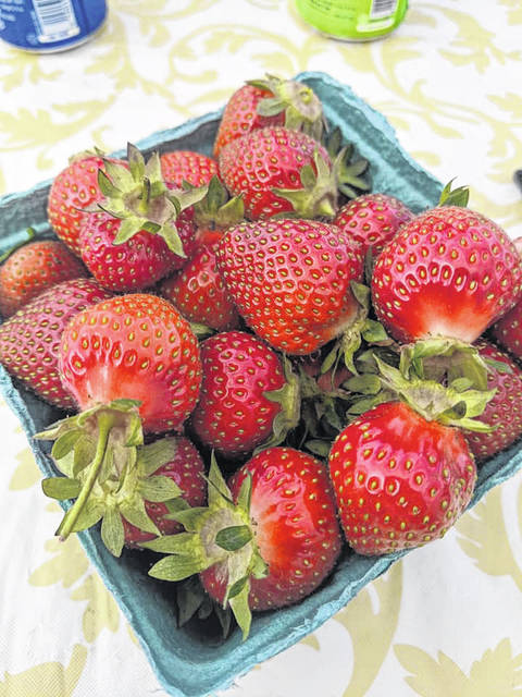 Two vendors will have strawberries at today's farmer's market.