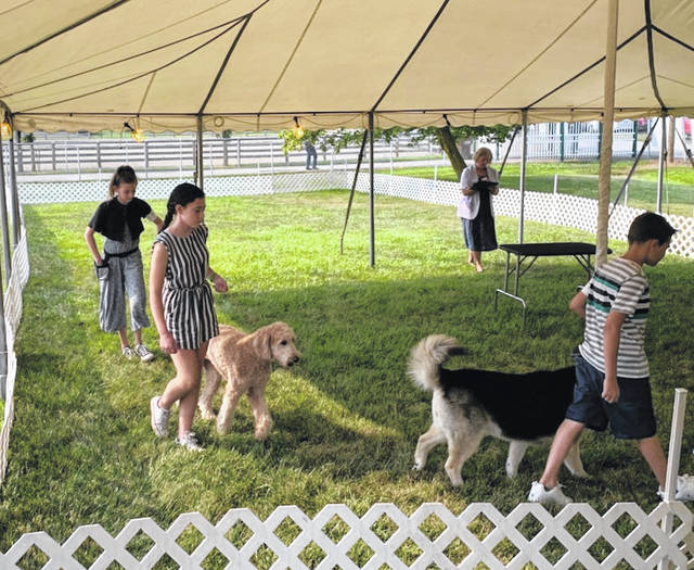 """The junior fair dog show began in the morning on Monday at the Fayette County Fair. Several exhibitors showed off their skills, including Lynnon Haines (middle) with her dog, """"Leia."""""""