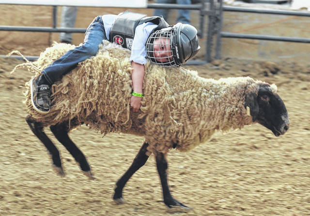 This youngster was able to hang on and ride this sheep while several other children could not stay on during the mutton busting exhibition at the Fayette County Fair Monday, July 19, 2021.